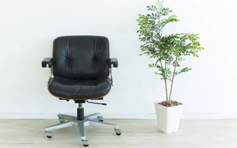 office chair on wood