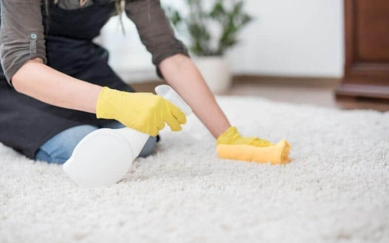 cleaning dirt of carpet