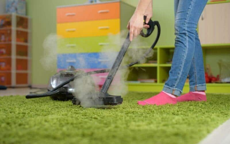 how to kill dust mites in carpet